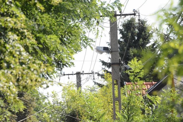 Villamos hálózatot megközelítő fák gallyazása